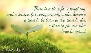 ecclesiastes3.1.jpeg